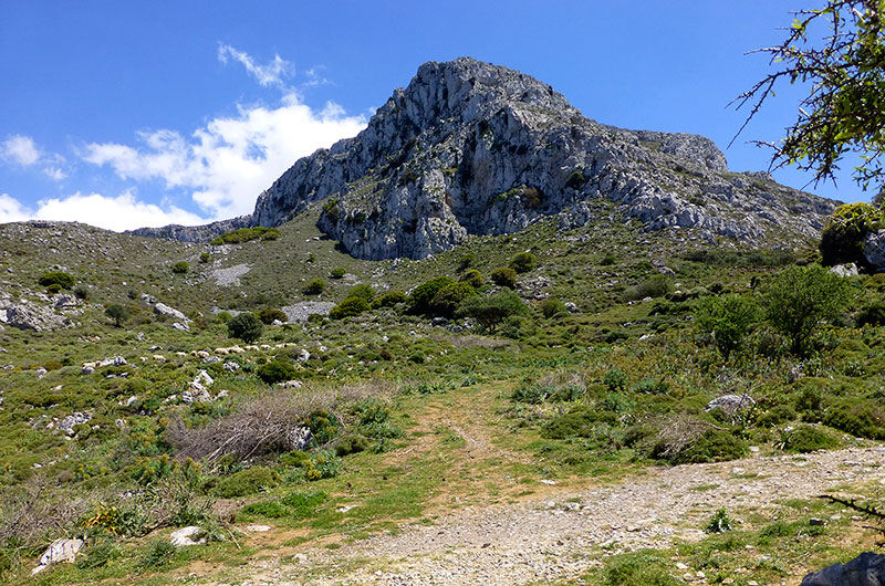 Mächtig erhebt sich direkt vor uns der höchste Gipfel der Region: Der imposante Prinias mit 802 Metern.