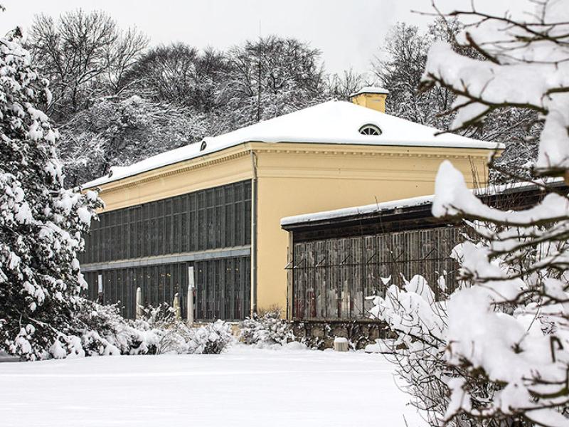Der Winter 2014 brachte reichlich Schnee.