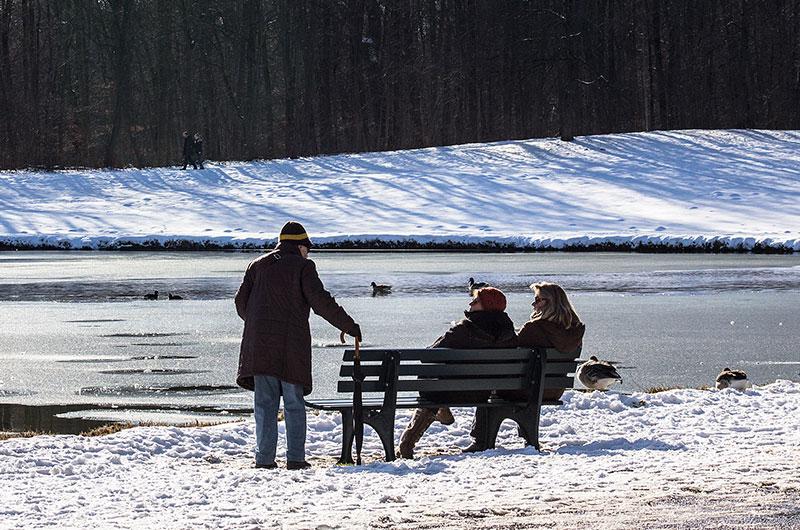 Die sonnigen Parkbänke am Pagodenburger See sind besonders im Winter beliebt.