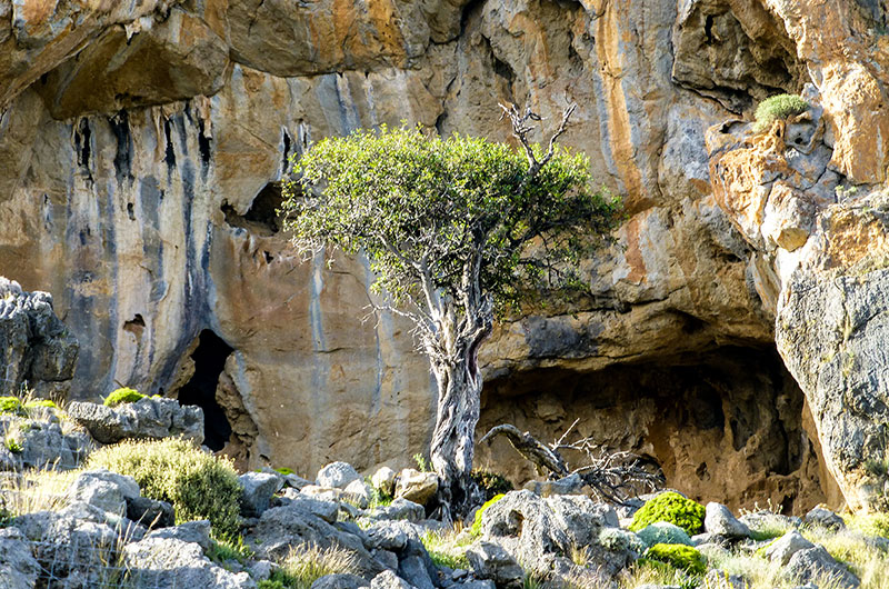 Im Karstgestein haben sich kleine und große Höhlen gebildet.