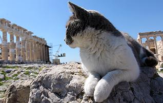 Athen: Neue Eintrittspreise für Akropolis ab 1. April 2016