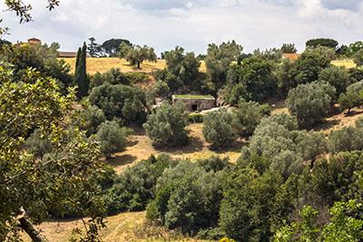 tuscania peschiere nekropole latium toskana italien