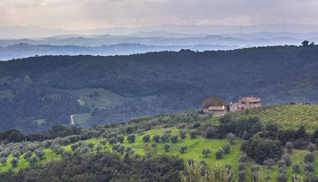 Der Traum von Italien: Eine kleine Fattoria bei Artimino inmitten von Wein und Olivenplantagen. Trotz der langen Tradition ist der Rotwein Carmignano nur in Italien besser bekannt.