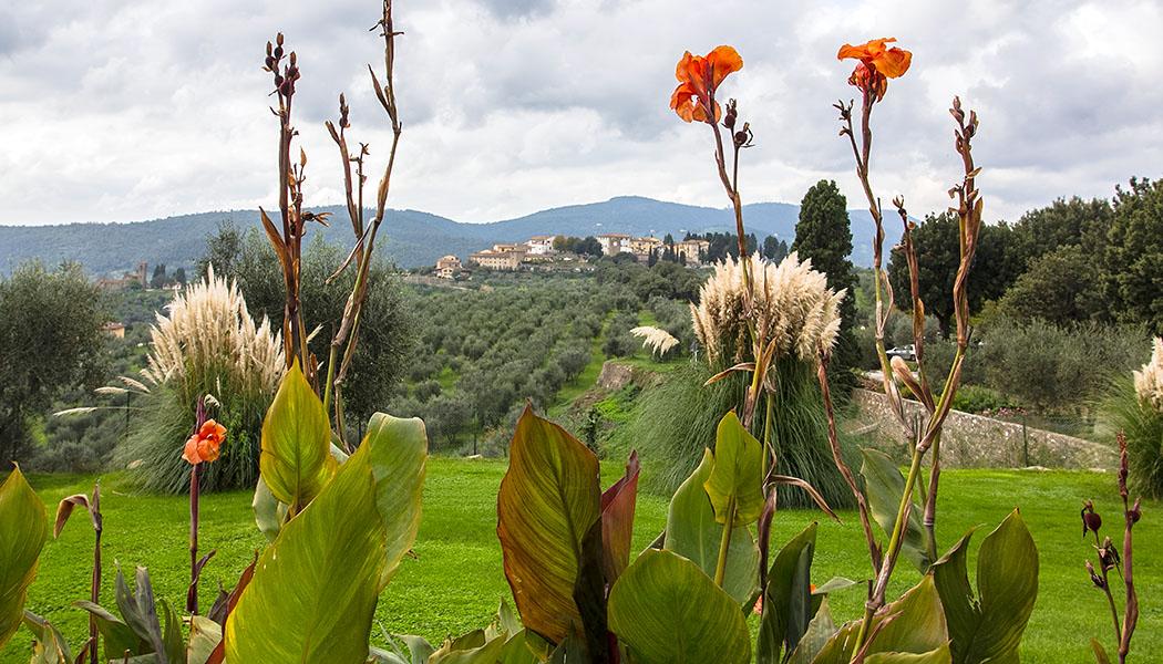 Blick von der Villa Medici hinüber nach Artimino, das von Weingärten und Olivenhainen umgeben wird. Links im Bild die frühromanischen Pieve di San Leonardo.