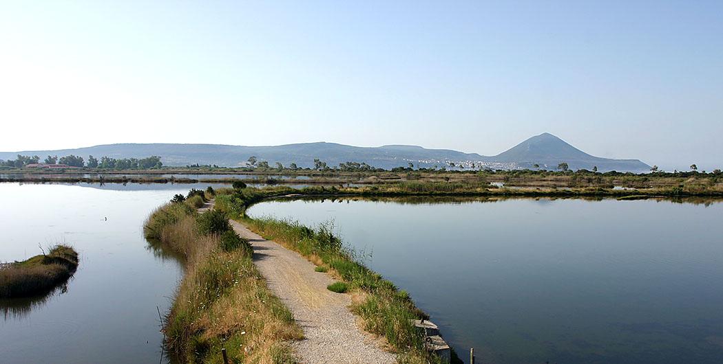 Pylos in der Navarinobucht Die Divari Lagune ist ein Eldorado für Naturliebhaber und Fotofreunde. Das Biotop ist ein Paradies für Zug- und Wasservögel, Amphibien und vieler weiterer teilweise seltener Tierarten.