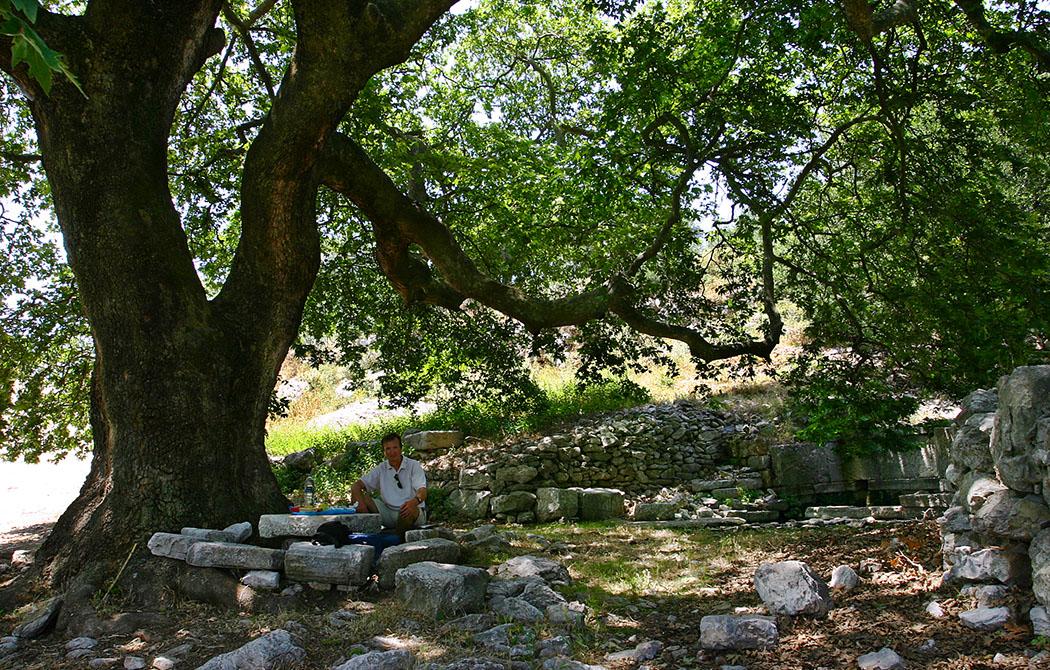 peloponnese zacharo elis figaleia greece Verdiente Mittagspause inmitter Ruinen der antiken Bergstadt Phigaleia im Südwesten von Arkadien auf dem Peloponnes.