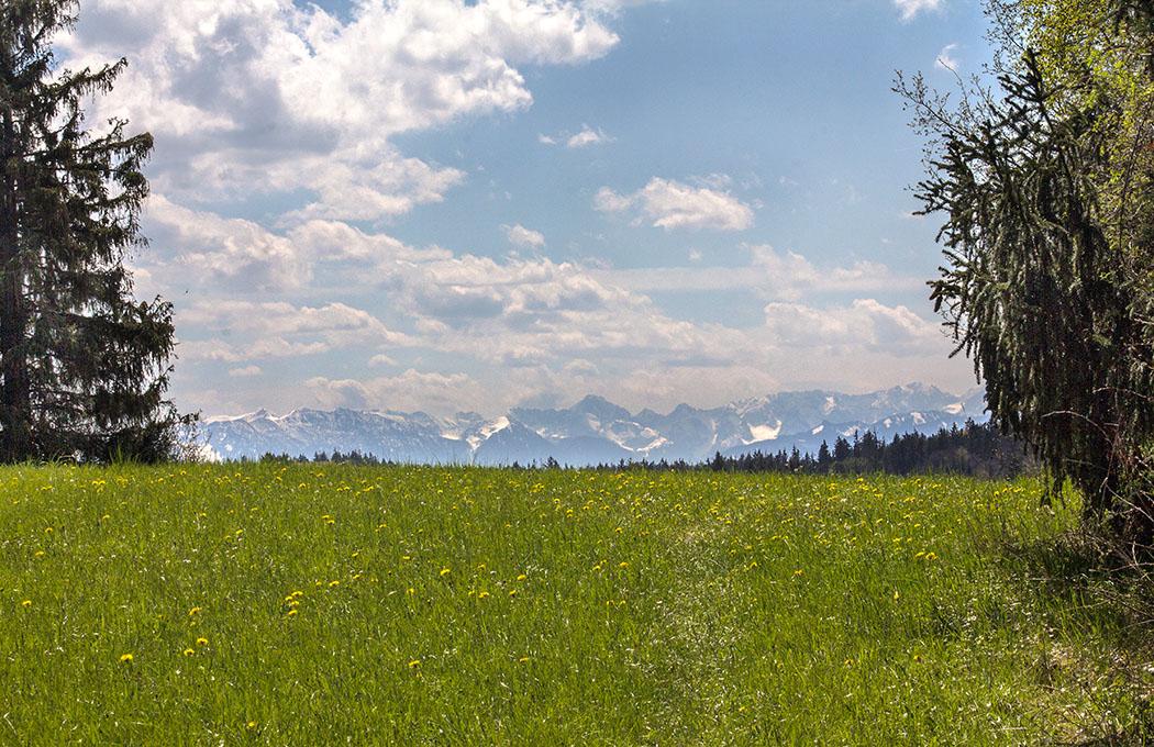 Wunderschöner Alpenblick von der höchsten Stelle des Mesnerbichl bei Erling.