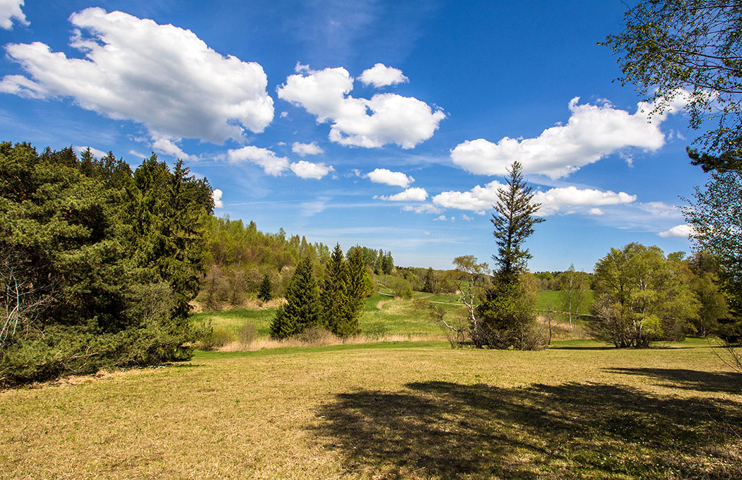 Der Mesnerbichl bei Erling liegt nicht weit vom Kloster Andechs entfernt und ist ein Naturschutzgebiet mit großer botanischen Artenvielfalt. Für Blumenliebhaber gibt es hier vom Frühling bis Spätsommer viel zu entdecken.