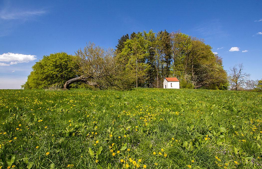 Das Stephansbichl mit der Wallfahrtskapelle St. Stephan liegt schon nahe bei Machtlfing.