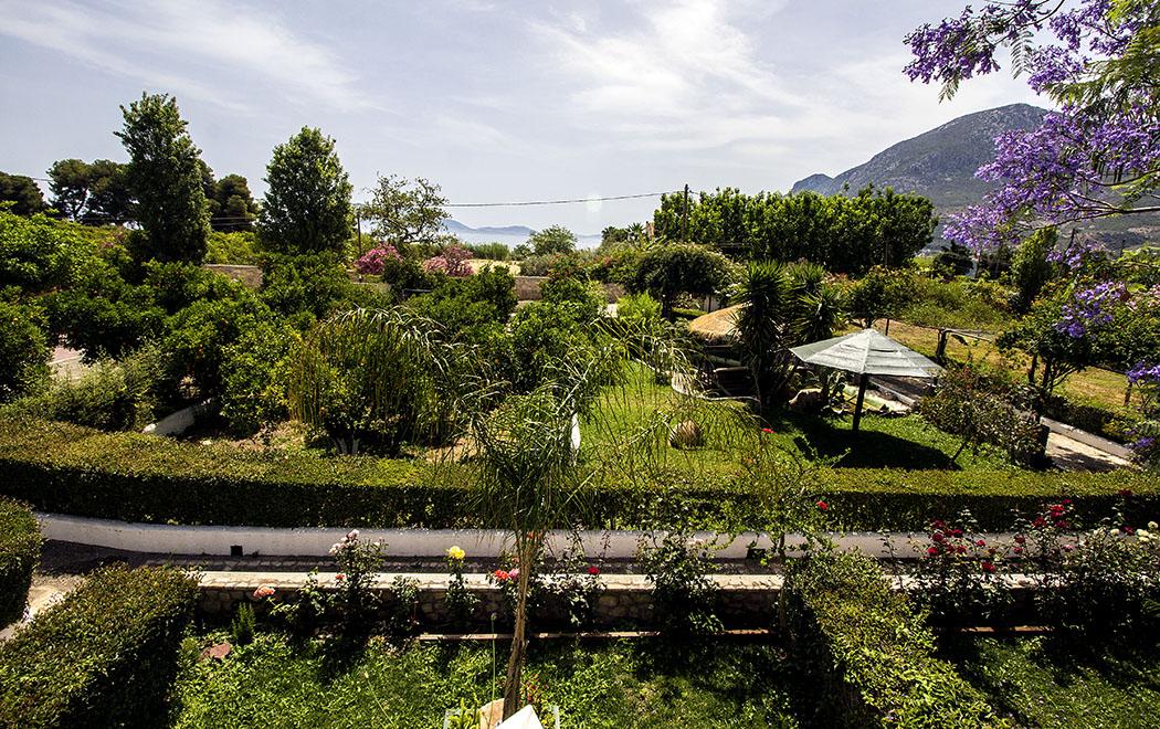 Aussicht von unserer Terrasse auf Garten und Ägäis.