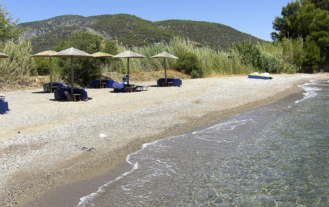 """Am Strand stehen Sonnenliegen und Schirme für die Hotelgäste bereit. Die Liegen sind mit Schlössern vor """"Fremdbesuchern"""" gesichert, an der Rezeption sind die Schlüssel erhältlich."""