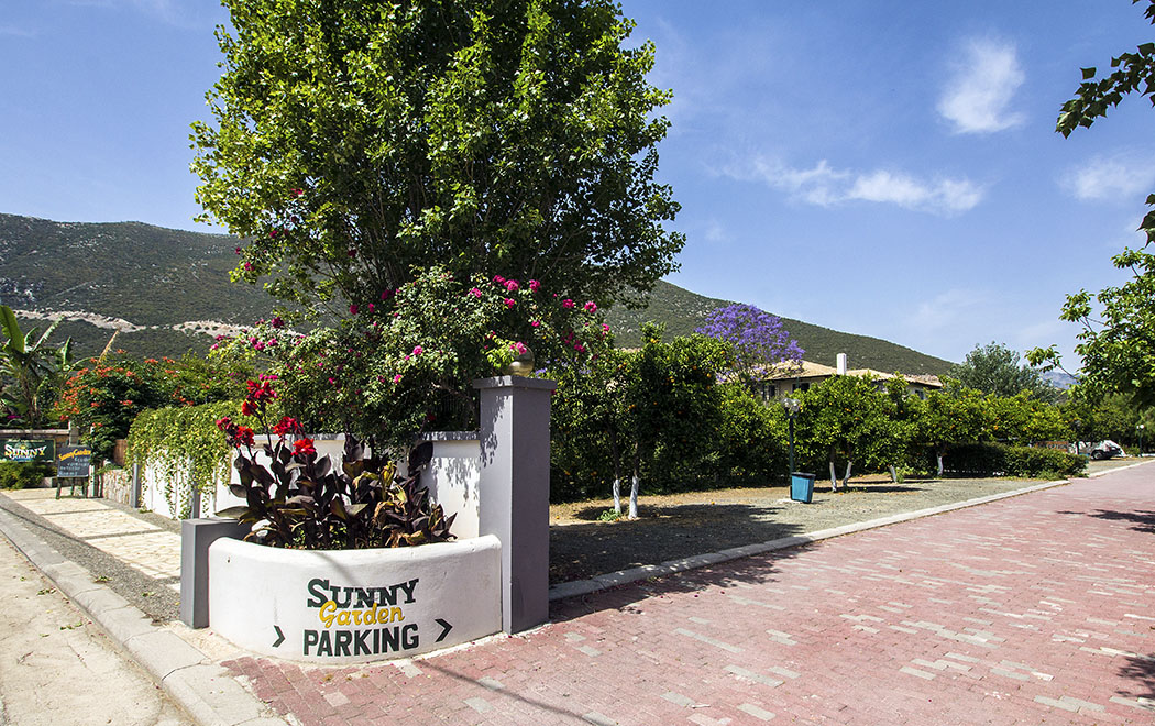 Der Parkplatz für den Leihwagen wird von kleinen Orangenbäumen beschattet.
