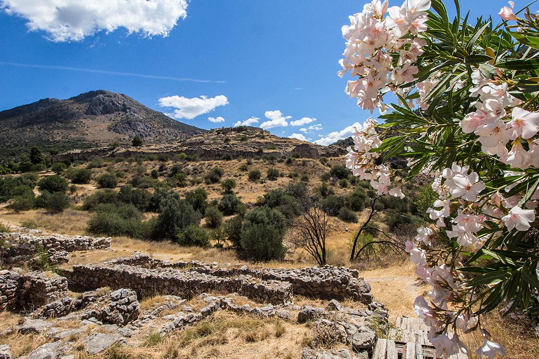 Mycenae argolis lower city peleoponnes greece Die Burganlage von Mykene war von einer ausgedehnten Unterstadt und einer Nekropole umgeben. Allerdings sind Siedlungsbereich und Gräberbezirk nicht voneinander getrennt. Man gewinnt den Eindruck, dass Siedlungsareale mit Flächen, die für Grabzwecke reserviert waren, abwechseln.
