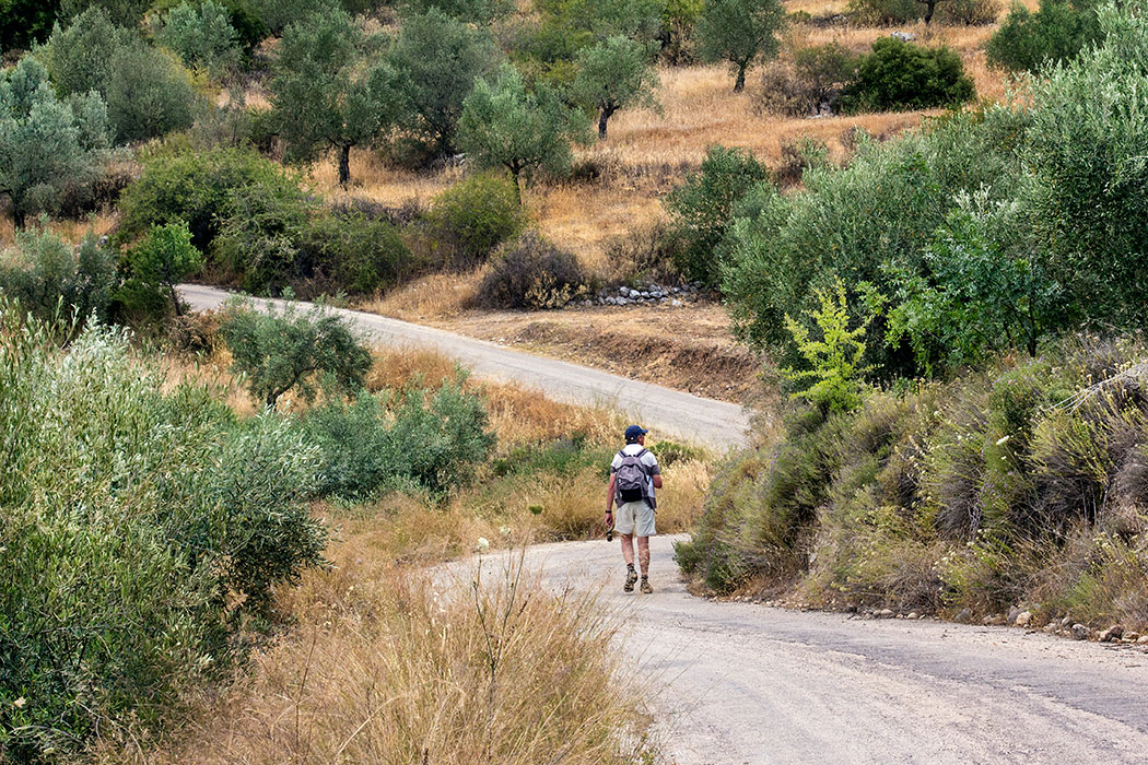 Mycenae hiking tholos tombs argolis peloponnes greece Eine Straße führt an der Westseite des Panagitsa-Hügels entlang. Hier liegen bronzezeitliche Kuppelgräber in den Feldterrassen, nur wenige hundert Meter voneinander entfernt. Hans war mit Hilfe der Handy-App MAPS.ME der Entdeckerkönig.