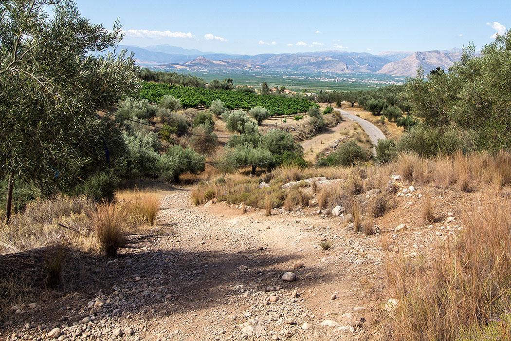 Ein Blick zurück zum Ausgangspunkt an der Teerstraße, dahinter die grüne Ebene von Argos. Die Larisa-Festung von Argos ist (links) auf dem steilen Kegelberg gut erkennbar.