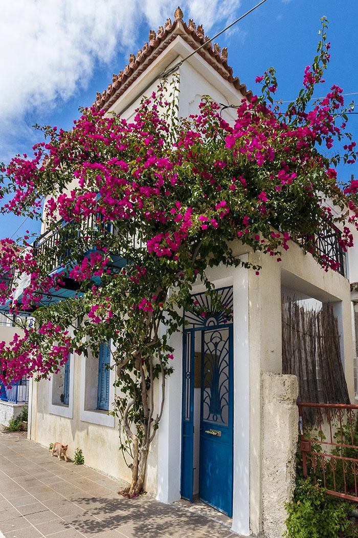 poros island saronic gulf troizen house harbour methana piraeus attica peloponnese greece Gepflegte Häuser und kleine Gärtchen machen das Flanieren an der Uferpromenade auf der Insel Poros zu einem Vergnügen.