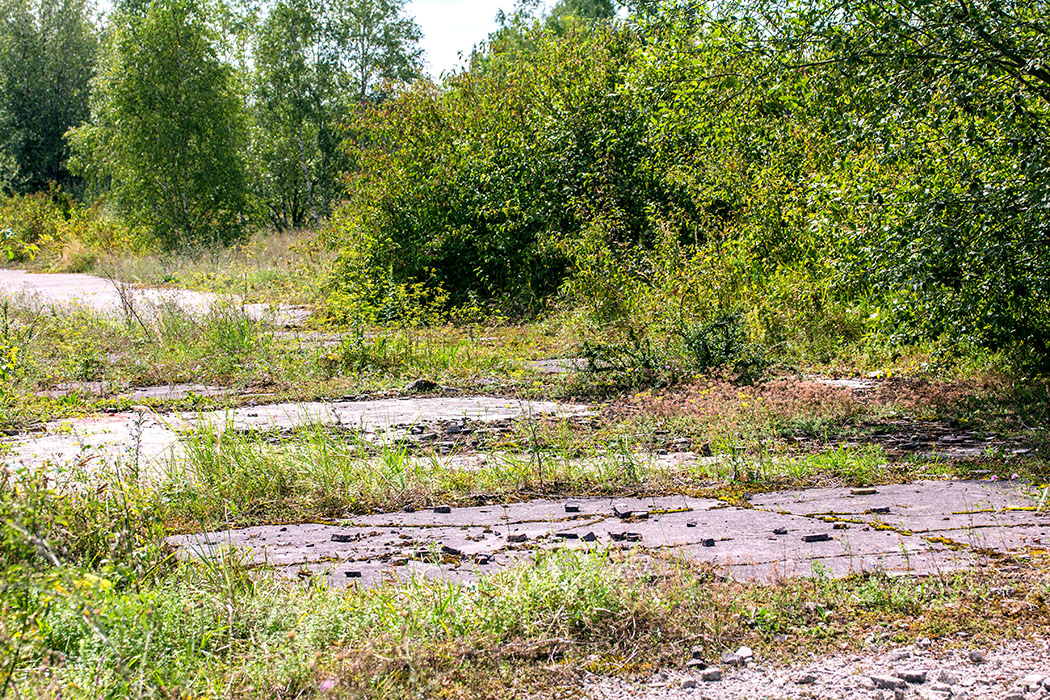 Deutlich sind im Neuaubinger Gleislager noch die Fundamente in Form von Beton- und Teerböden erkennbar.