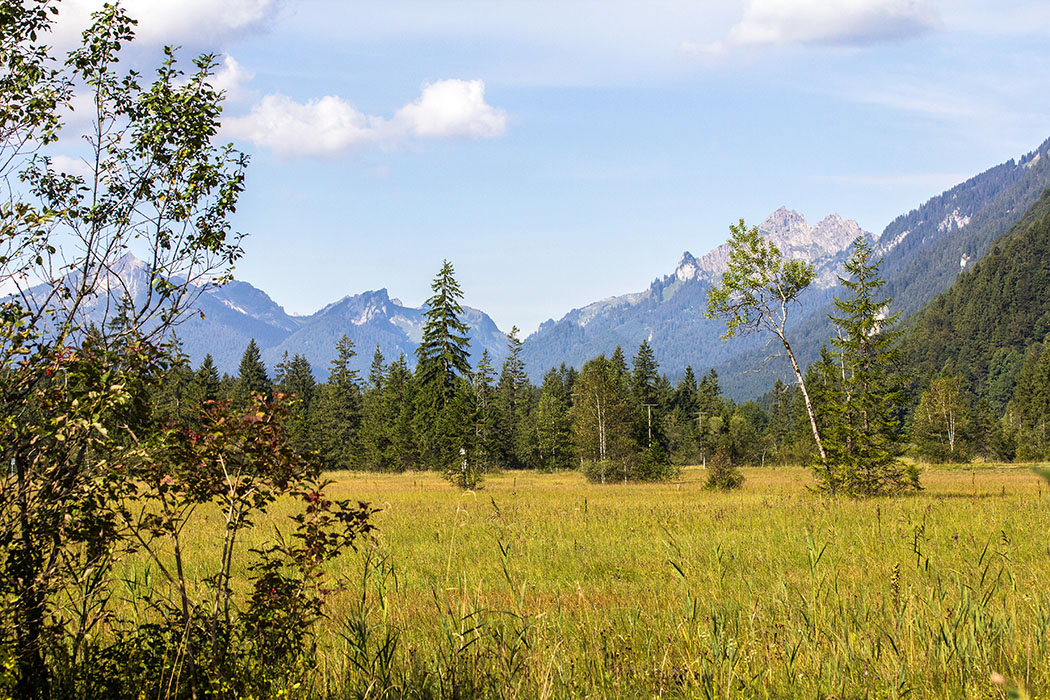 Das Bergpanorama der Ammergauer Alpen gibt dem Ettaler Weidmoos einen wunderschönen Rahmen.