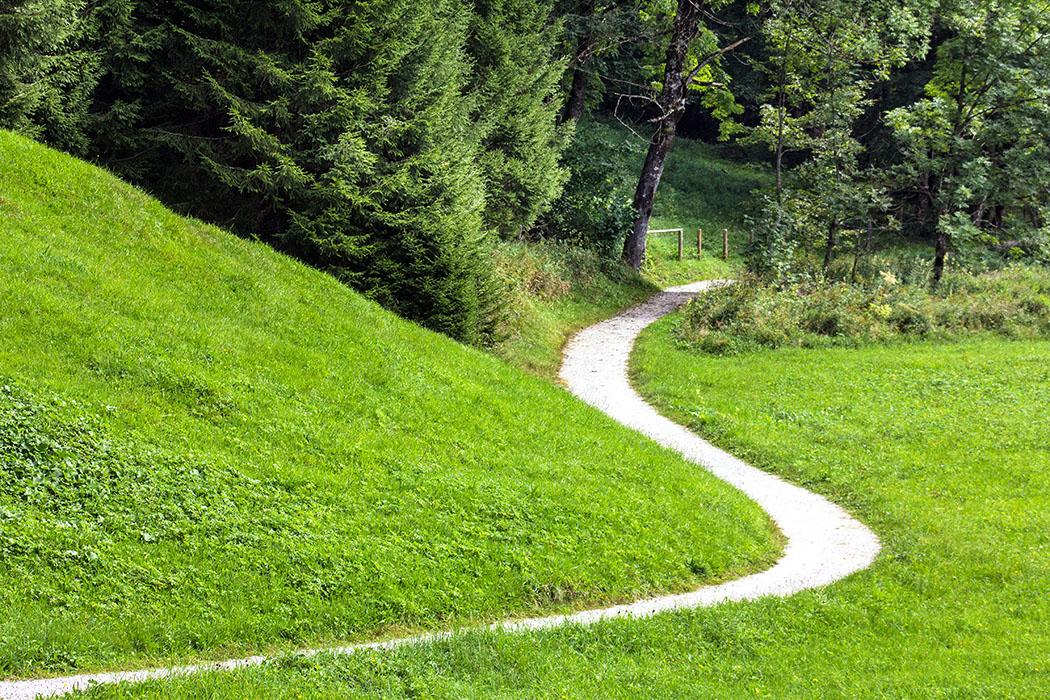 Malerisch schlängelt sich der Wanderweg am Waldrand entlang.