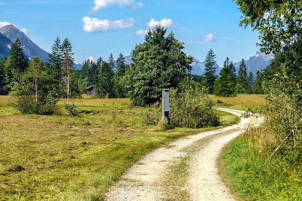 Der Wegweiser am Wanderweg führt, auf einem Pfad am schmalen Bach entlang, zum Quelltopf der kleinen Ammerquellen.
