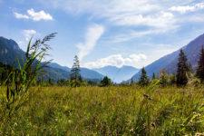 ettaler weidmoos graswangtal ammergauer alpen bayern panorama titel