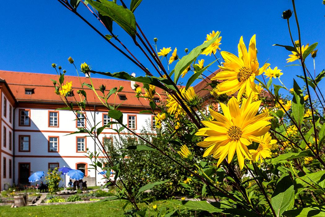 kloster-beuerberg-klostergarten-blumen-eurasburg-wolfratshausen-bayern Üppig blühende Blumen im Klostergarten von Beuerberg.