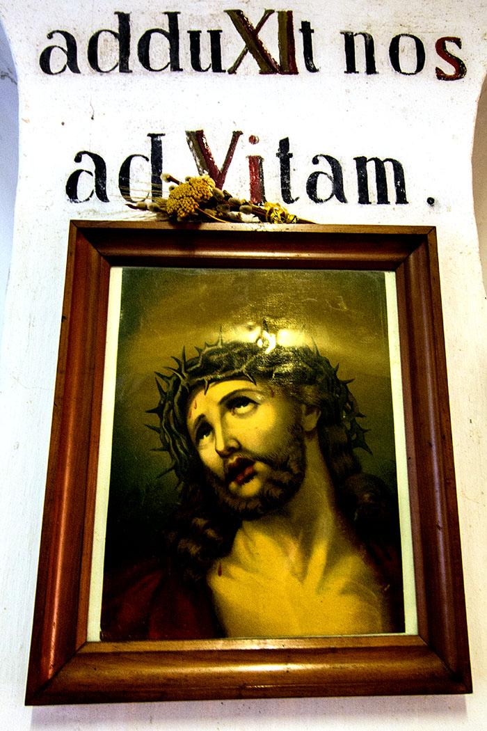 """Im Likörkeller """"... ad vitam..."""" für ein langes Leben."""