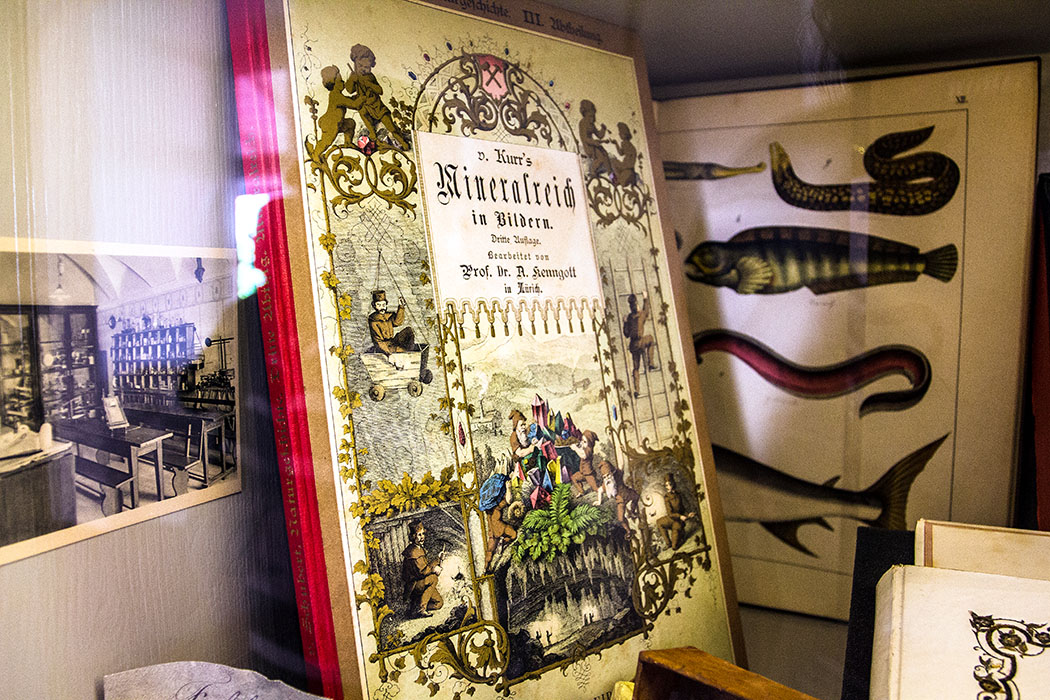 Alte Schulbücher: V. Knurr's Mineralreich in Bildern, daneben eine Fotografie der Klassenzimmer des Internats.
