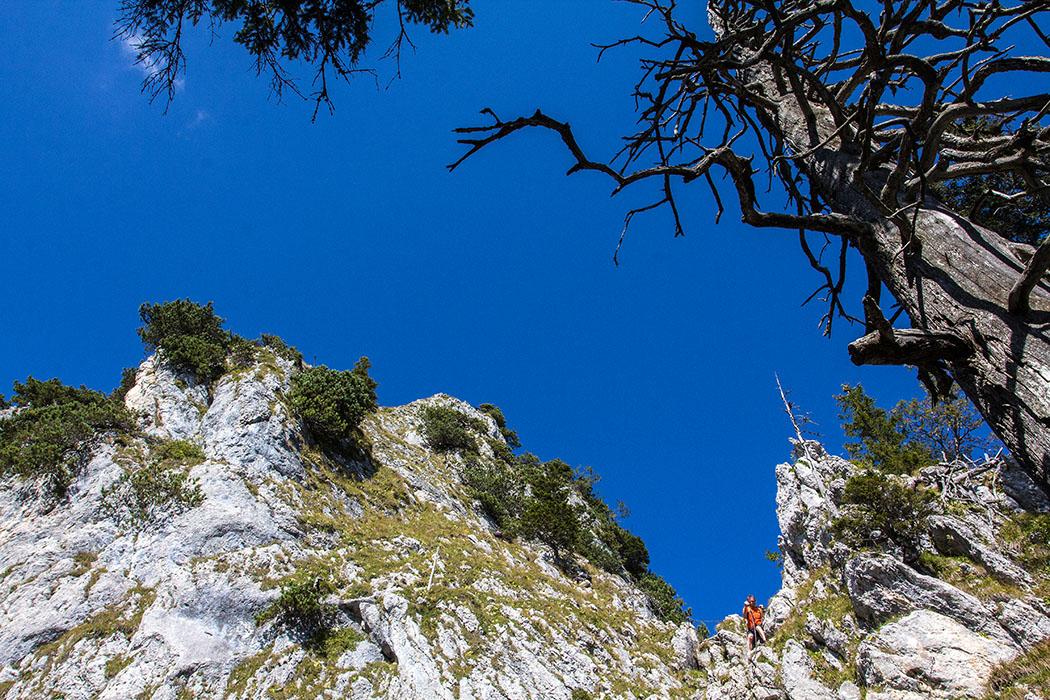 ammergauer-alpen-laber-klettersteig-ettaler-manndl-oberammergau-ettal-bayern Der Schwierigkeitgrad des Klettersteigs auf das Ettaler Manndl ist A/B: Wenig bis mäßig schwierig. Wir haben den Eindruck, dass viele ungeübte hier völlig ohne Klettersteigausrüstung aufsteigen.