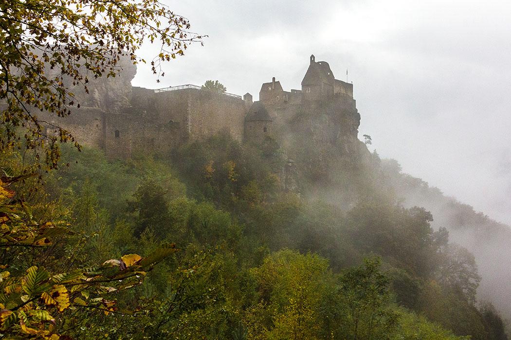 Mystisch ziehen am Morgen die Nebelschwaden von der Donau herauf zur Burgruine Aggstein.