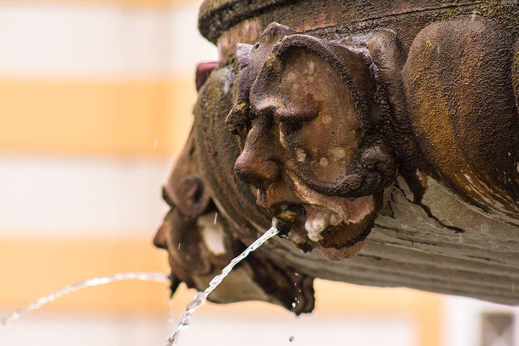 Die Wasserspeier vom Brunnen im Prälatenhof in Stift Melk.