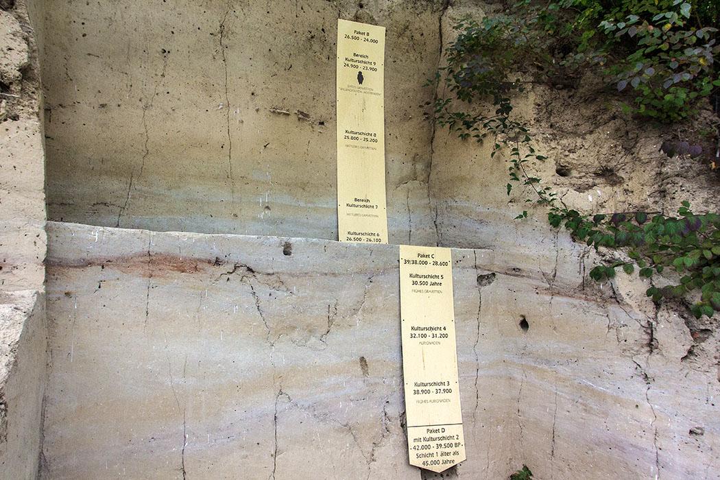 An der Fundstelle der Venus von Willendorf sind meterhohe Lössablagerungen sichtbar. Nach neuesten Datierungen der Schichten haben sich Menschen in einem Zeitraum von 42 000 bis 24 000 v. Chr. hier aufgehalten.