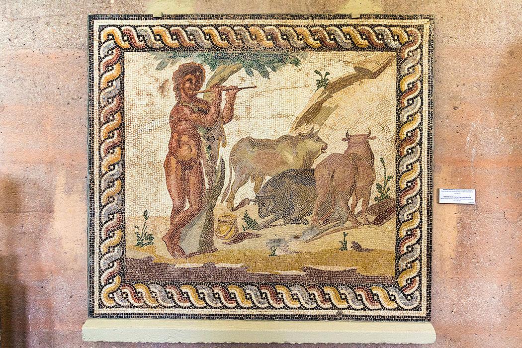 Das römische Mosaik zeigt eine Hirtenszene mit Rindern auf der Weide. Fundort: Römische Villa in Kokkinovrysi, einem Ortsteil von Korinth. Datierung: 150 bis 200 n. Chr.