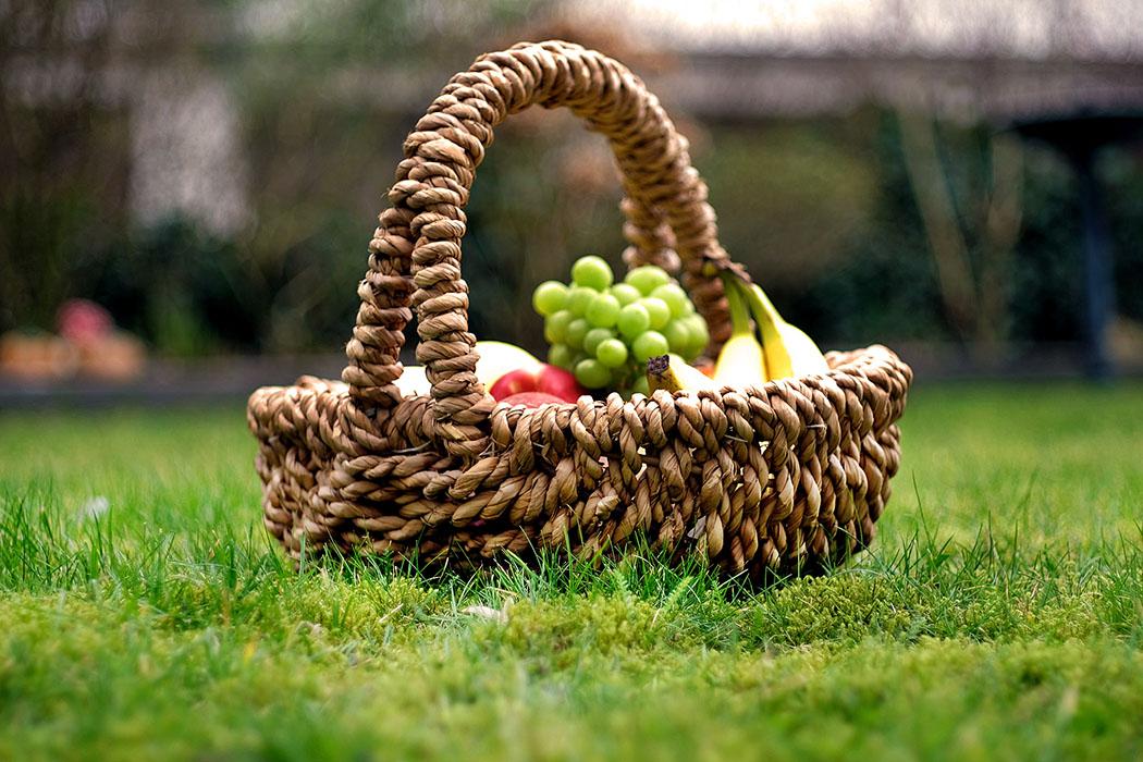 Frühling in München & Umgebung: 18 Lieblings-Ausflugsziele - picknick_muenchen_park - Für ein Picknick im Frühling ist die Mittags die schönste Zeit. Dann steht die Sonne am höchsten und es ist angenehm warm. Wenn es gegen Nachmittag etwas kühler wird, einfach eine Jacke einpacken. Wer einen klassischen Picknickkorb bevorzugt, sollte eine Picknickdecke dabei haben.