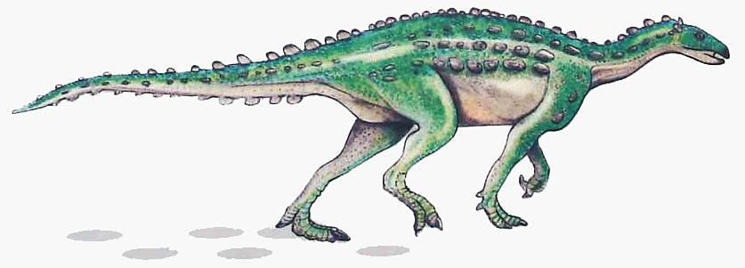 Scelidosaurus - Thyreophora Pflanzenfressende Dinosaurier, ähnlich dem Scelidosaurus, haben einst in der Marocche di Dro ihre Spuren hinterlassen.