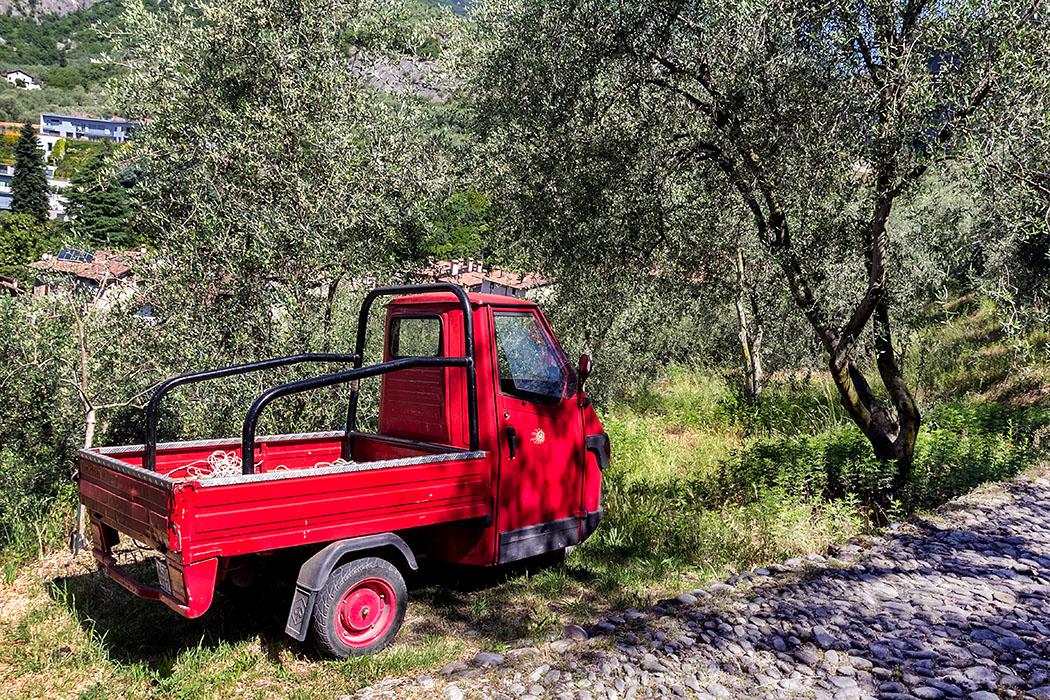 Eine rote Piaggio Ape im Olivenhain bei Arco. Die dreirädrigen Kleintransporter sind für enge Gassen und schmale Pfade in den Steinterrassen ideal.