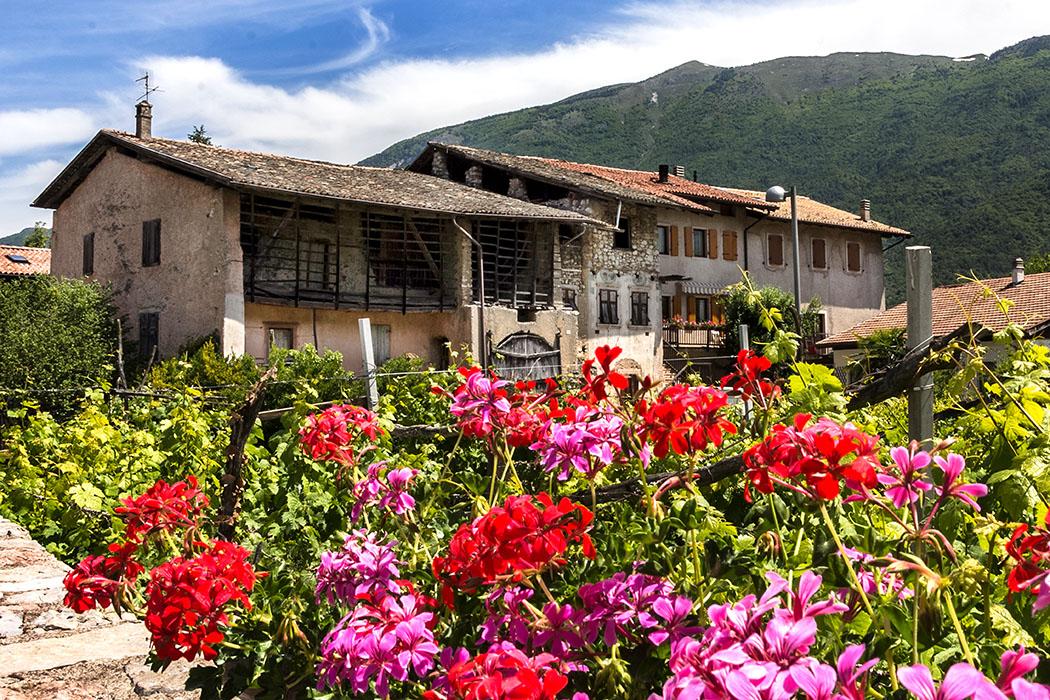 Am Dorfrand von Cavedine: Bauernhöfe und Wohnhäuser inmitten von Weingärten wirken wie aus der Zeit gefallen.