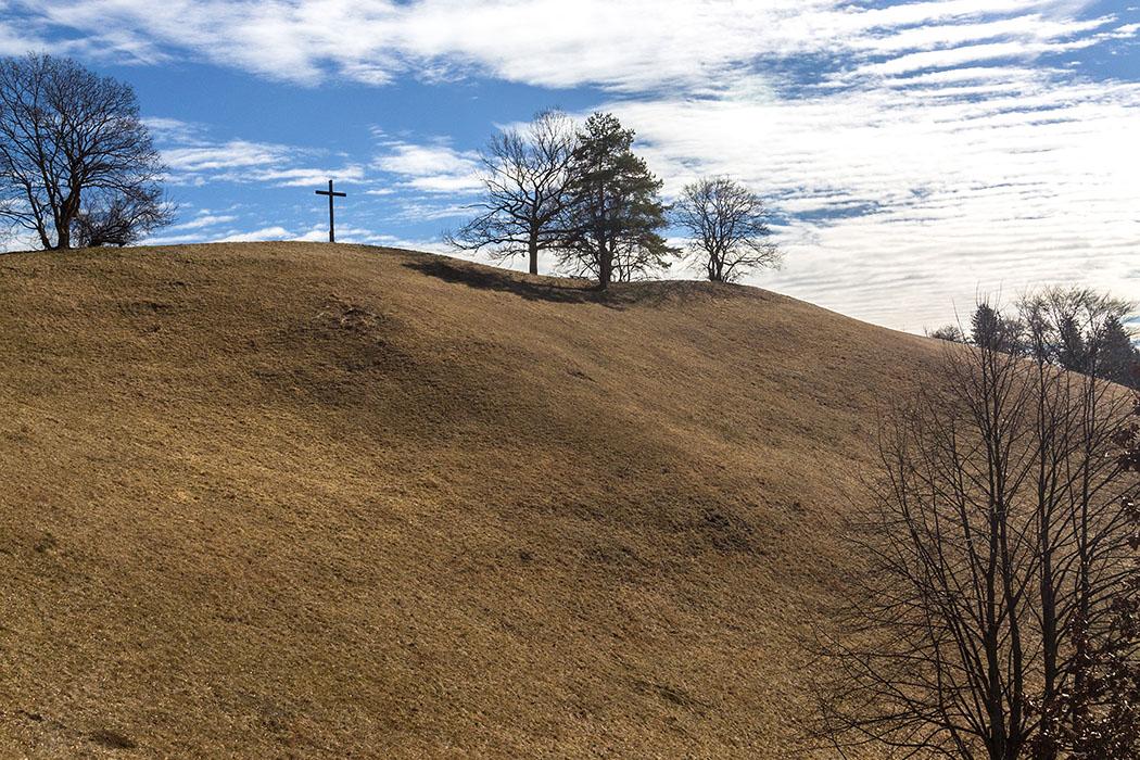 Das ist der Steilhang des Hirschbergs auf dem die meisten Pflanzenarten wachsen. Bitte die Wiesen nicht betreten.
