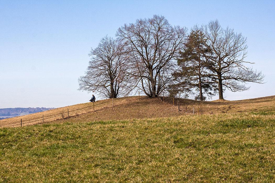 Mehrere aussichtsreiche Ruhebänke am Hirschberg-Gipfel verführen zur Rast mit Alpenpanroama.
