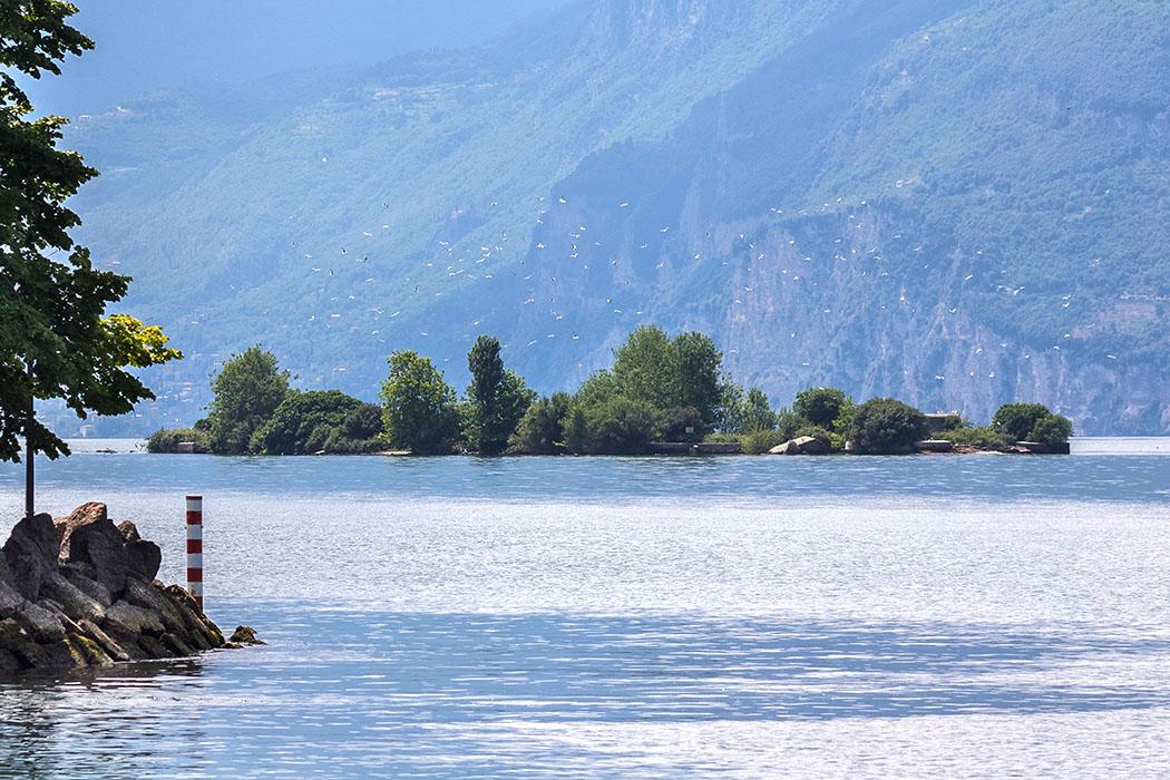 cassone di malcesine trimelone gardasee lago di garda italien Die unbewohnte Insel Trimelone liegt nahe des Ostufers vom Gardasee. Leider wurde sie im letzten Jahrhundert durch Munitionsdepots verunziert. Nach einer Explosion wurde sie Sperrgebiet. Inzwischen sich dort ein Vogelparadies entwickelt, das vom Boot aus beobachtet werden kann.