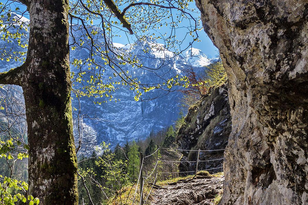 Oberbayern: Königssee - Von Salet zur Fischunkelalm am Obersee - Deutschland, Oberbayern, Berchtesgadener Land, Koenigssee, Obersee, Walchhuettenwand, Teufelshoerner, Nationalpark Berchtesgaden, Wanderung, April 2017 - Der Nationalpark Berchtesgaden lockt Bergfreunde mit seiner prachtvollen Landschaft inmitten unberührter Natur. Während unserer Wanderung am Obersee passierten wir den gesicherten Felsensteig unter der Walchhüttenwand, im Hintergrund der Wildpalfen und das große Teufelshorn.