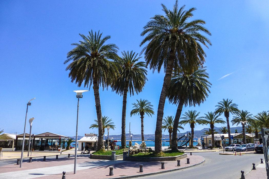 An der hübschen Plateia am Hafen schmücken große Palmen die Altstadt von Sitia.