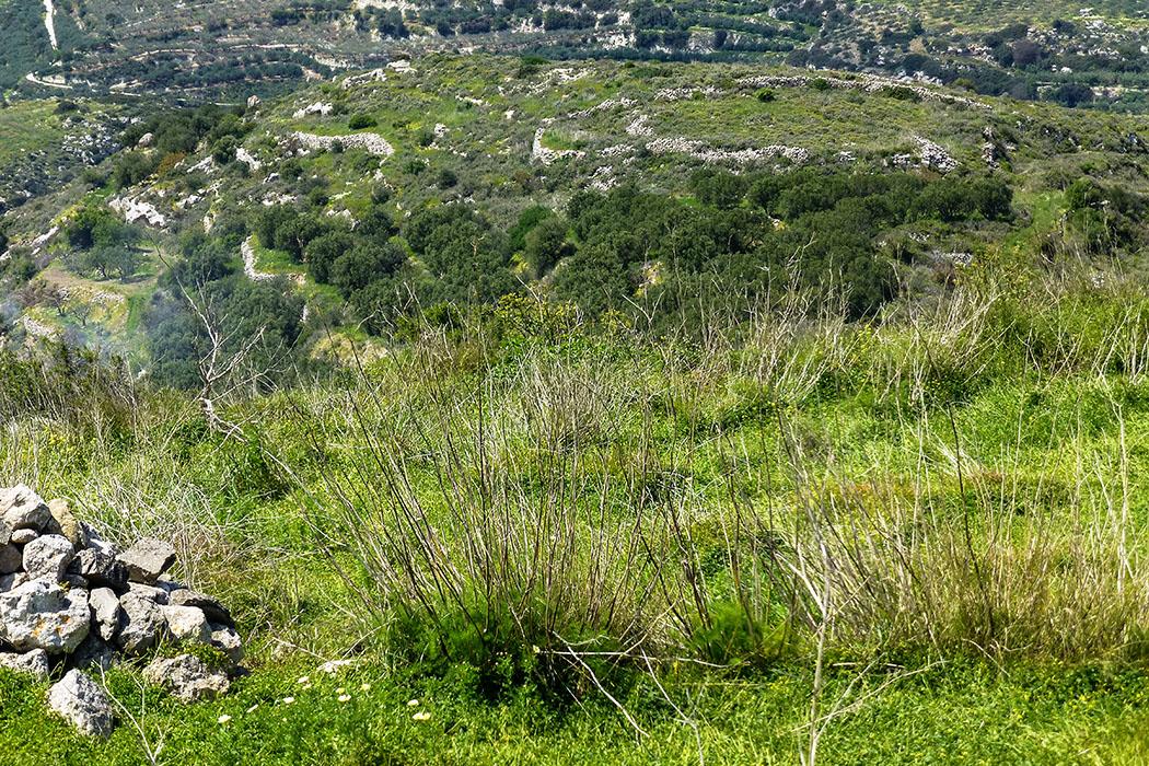 """reise-zikaden.de, greece, griechenland, crete, kreta, lasithi, sitia, praisos, third akropolis - Die """"Dritte Akropolis"""" liegt unterhalb der """"Ersten"""". Dies zeigt der Blickwinkel vom Gipfel deutlich. In der Ebene zwischen den beiden Hügeln lag einst die Agora von Praisos."""