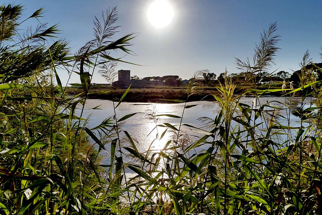"""Saline di Tarquinia 01 - Entlang eines Rundwegs mit Infotafeln können die flachen Wasserbecken der """"Saline di Tarquinia"""" begangen werden. Sie sind wichtiger Lebensraum für Zug- und Wasservögel und heute ein Naturschutzgebiet."""