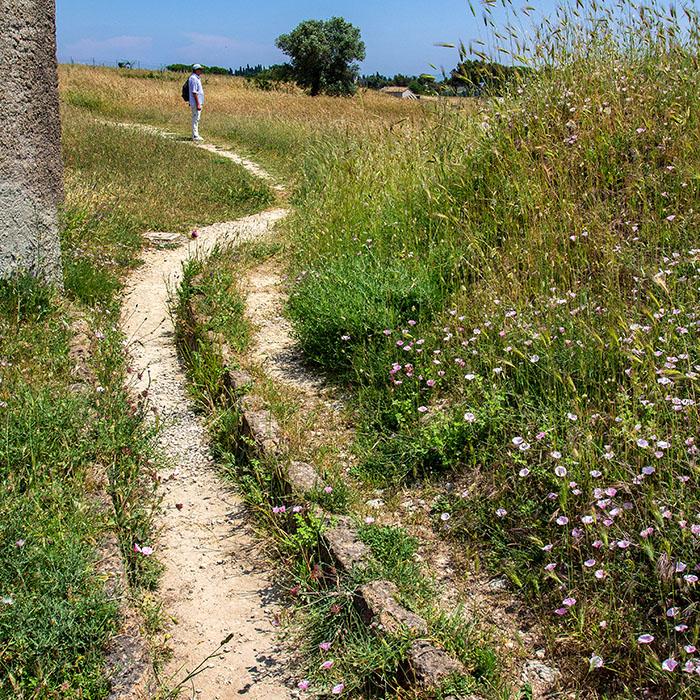 reise-zikaden.de, Italien, Latium, Tarquinia, Monterozzi Nekropole, Etrusker, Tumulus, Einfassungen - Teilweise ist bei den Gräbern der Monterozzi-Nekropole noch die Steineinfassung der runden Grabhügel erkennbar.