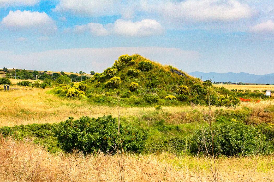 reise-zikaden.de, italy, italien, italia, tarquinia, Doganaccia, Nekropole, Tumuli del Re - Doganaccia-Nekropole: Hier wurden etruskische Könige bestattet.