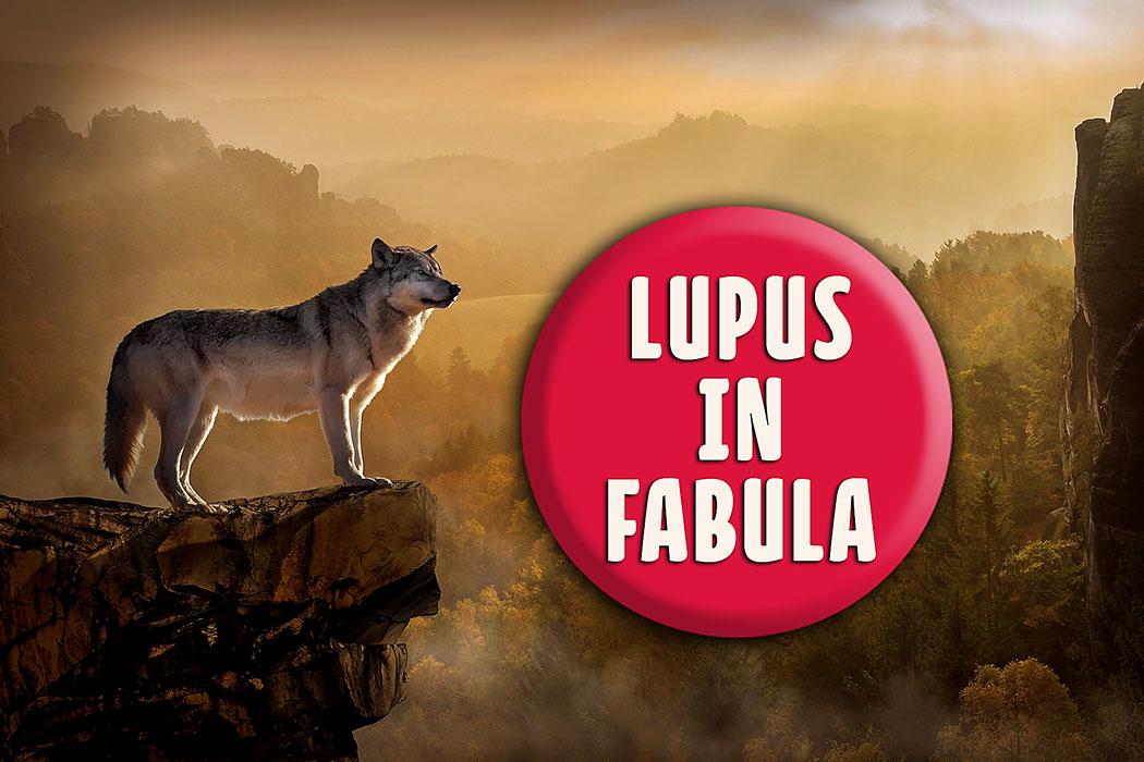 Zitate aus der Antike: Lupus in fabula - Der Wolf in der Fabel - wolf-landscape_ol - Der lateinische Ausdruck Lupus in fabula drückt das Erstaunen über das unverhoffte Auftauchen einer Person aus, über die soeben gesprochen wurde. Der sprichwörtliche Wolf in der Fabel erscheint unerwartet wenn man von ihm spricht.