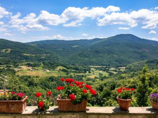 Bunte Blumen vor perfekter Aussicht auf das Valle di Pavone und die bewaldeten Gipfel der Colline Metallifere.
