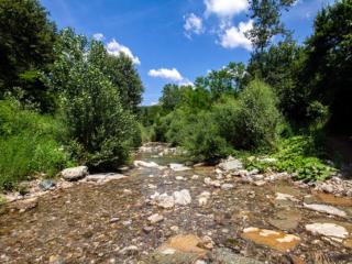 Der Fluss Pavone durchfließt das Valle di Pavone, entspringt auf dem Poggio di Montieri und ist ein Nebenfluss der Cecina.