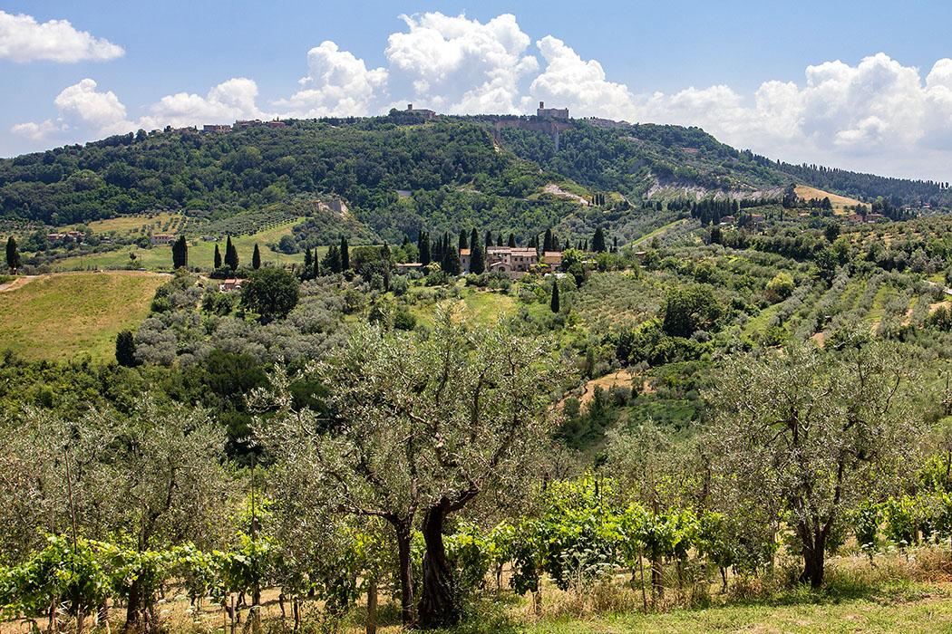 Volterra: Die Geschichte von San Giusto und der Badia-Nekropole - reise-zikaden.de, Italy, Tuscany, Volterra, Monte Nebbio, Badia Camaldulense, San Giusto Nuovo - Blick von San Cipirano auf den Monte Nebbio im Westen von Volterra. Gut erkennbar sind in der Mitte das Kloster Badia Camaldulense (links) und daneben das Kirchenschiff von San Giusto Nuovo. Links außen liegt der Weiler Montebrandoni, rechts außen sind die Häuser vom Borgo San Giusto sichtbar.